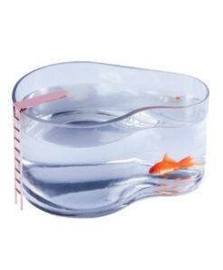 Doiy-Fishbowl