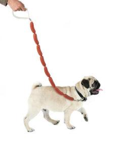 Balvi hondenriem