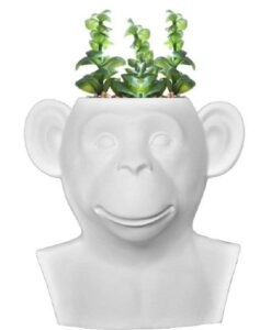 Invotis - White Monkey vase sfeerbeeld plant vaas